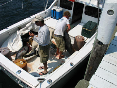 Block island sportfishing charters for Block island fishing charters