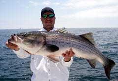 Rhode island fishing charters list of fishing guides for for Block island fishing charters